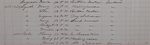 Eugene Lynch, 1876 Waterbury City Census